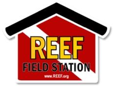 reef field station